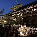 ロマンチックな祇園・清水の夜散策「京都東山花灯路」開催中✨
