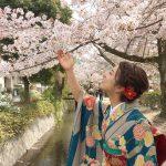 南禅寺から哲学の道①「満開の桜を追いかける」の巻