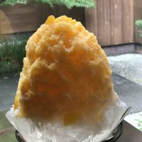 京のかき氷特集⑥リピーター続出!京都で一番古い氷屋さんのお店「page one」のかき氷は見るも食べるもいと涼し♪