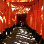 「てくてく京都烏丸店→伏見稲荷神社→祇園四条」アクセス抜群!1日観光コース